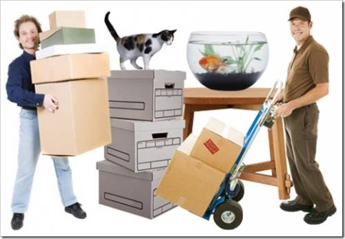 Как перевозить мебель и вещи при переезде