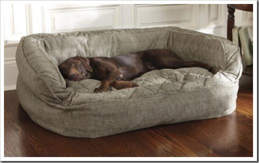 Виды лежаков для больших собак и как выбрать